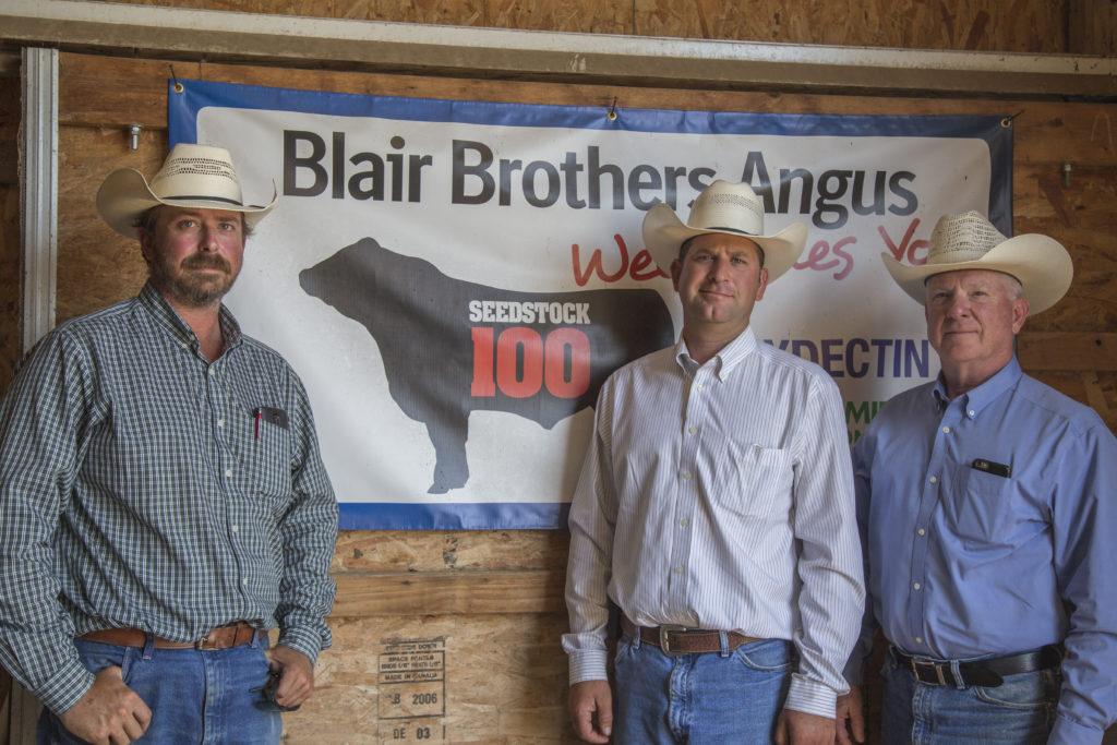 Blairs beef seestock 100