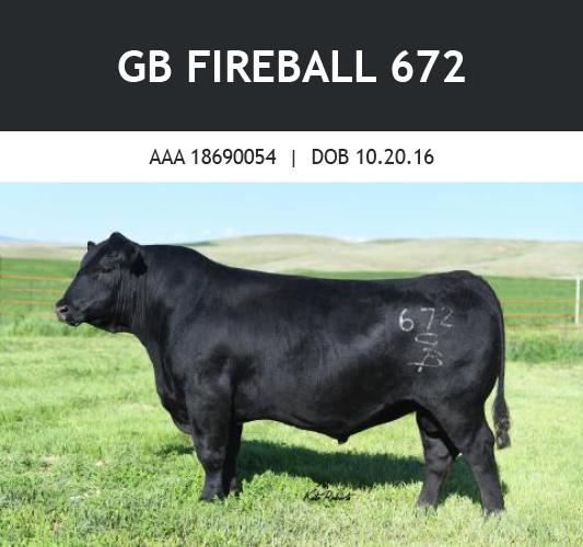 GB Fireball 672